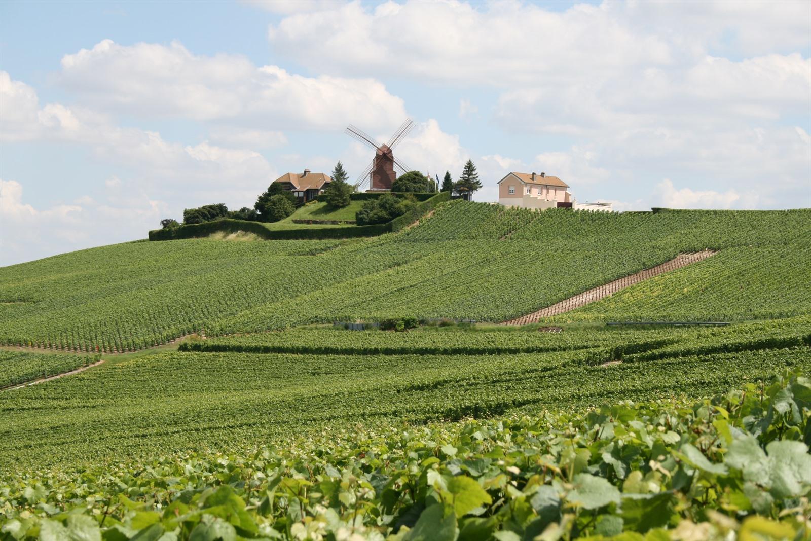 Weekendje Weg In De Champagnestreek Bezoek De Champagne