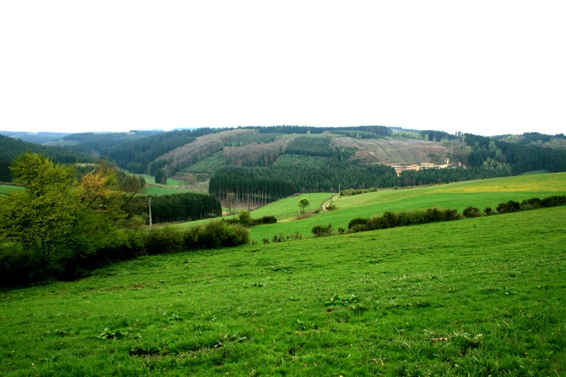 Ga op avontuur in Dinant Belgie  Gezin op Reis