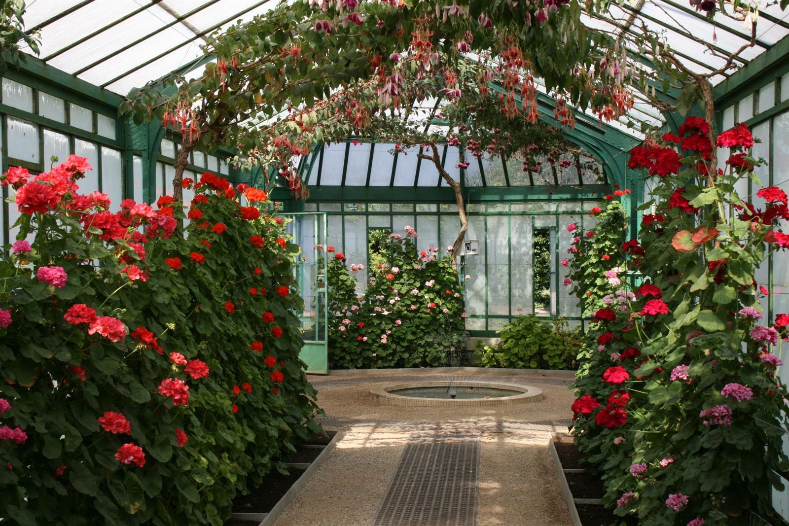 Koninklijke serres van laken   bloemententoonstelling