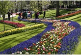 Keukenhof 2020: 'A World of Colours' - AFGELAST